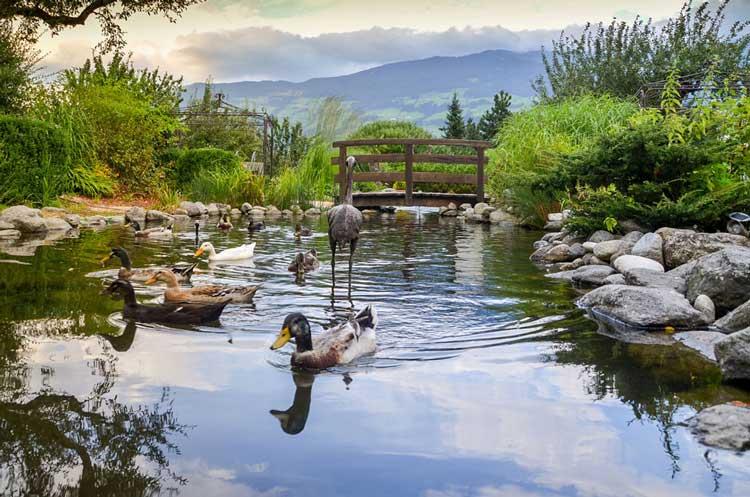 Hotelfotografie Tirol Garten